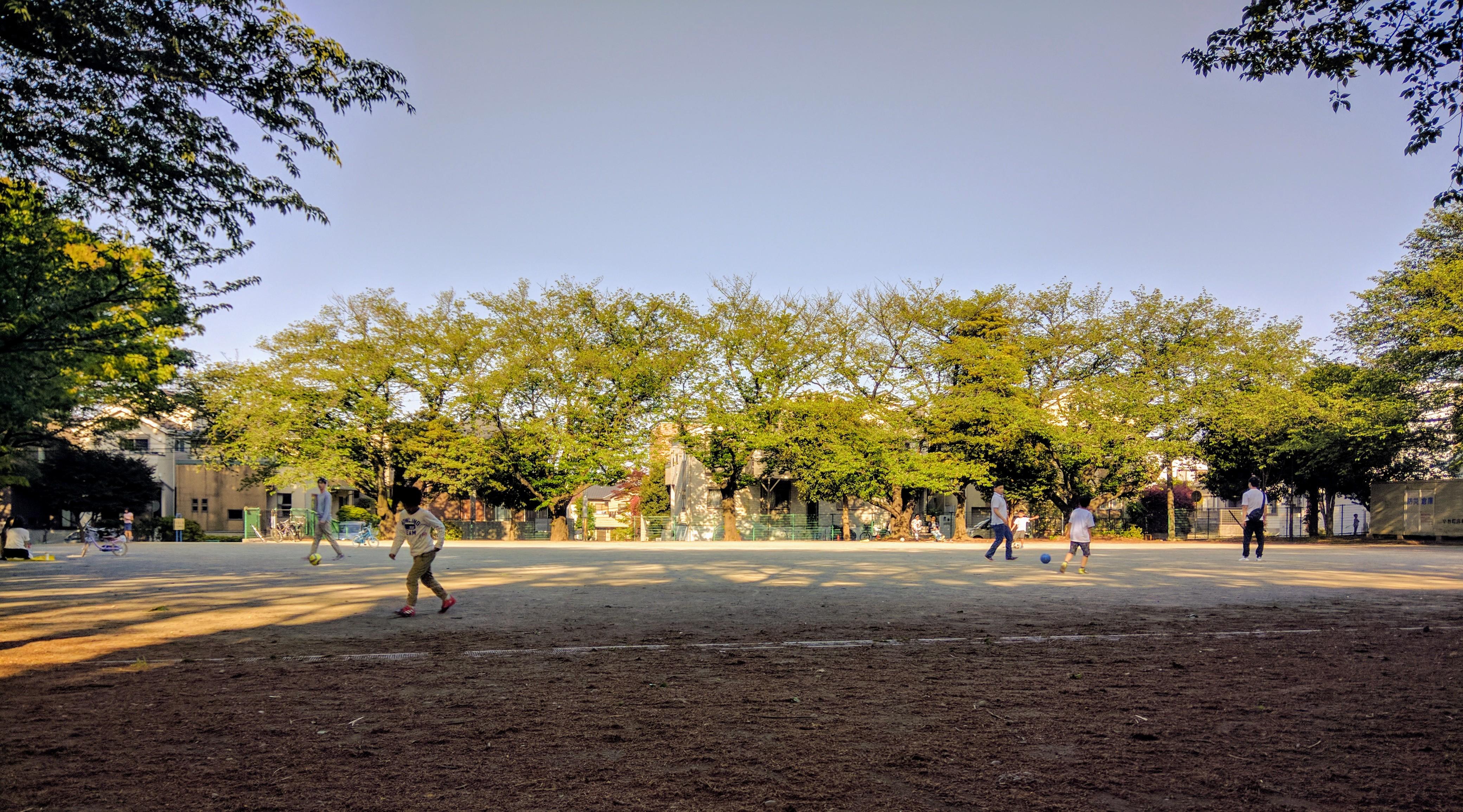 Kodai Park